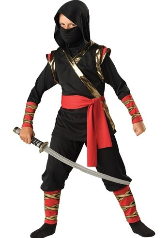 sc 1 st  The Costume Land & Kids Ninja Costume | $35.99 | The Costume Land