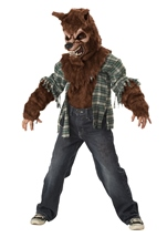 Brown Wolf Boys Costume