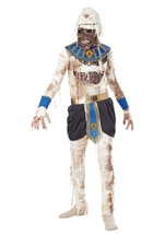 Pharaohs Revenge Boys Halloween Costume