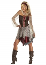 Adult South Seas Siren  Pirate Woman Costume