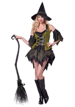 Bewitching Babe Woman Witch Costume
