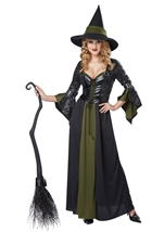 Classic Witch Women Halloween Costume