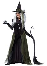 Adult Gothic Witch Woman Costume
