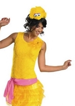 Big Bird Sassy Costume