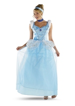 Disney Princess Cinderella Woman Costume