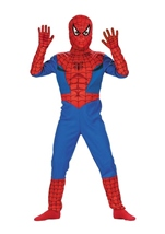 Spiderman Boys Halloween Costume