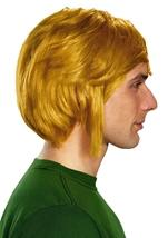Zelda Link Hyalin Men Wig
