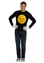 Wink Costume Kit