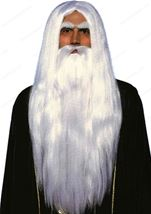 Wizard Men Wig And Beard Set