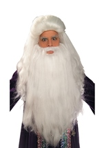 White Sorcerer Wig And Beard