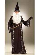 Oh Mr Wizard Costume