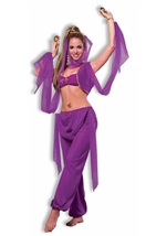 Desert Princess Arabian Women Costume