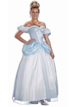 Story Book Princess Woman Costume