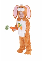 Rabbit Toddler Kids Costume