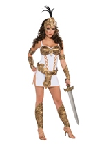 Medieval Warrior Women Sexy Deluxe Costume
