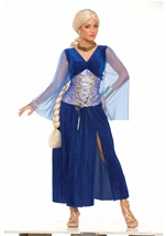 Medieval Lady Women Sapphire Costume