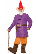 Garden Gnome Men Deluxe Costume