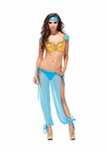 Adult Jazzy Jezebel Sexy Arabian Dancer Costume