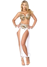 Harem Arabian Nights Princess Halloween Costume