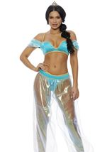 Adult Whole World Arab Princess Woman Costume