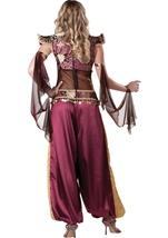 Adult Desert Jewel Arabian Women Costume