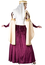 Adult Renaissance Princess Woman Queen Costume