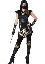 Ninja Mystique Woman Costume