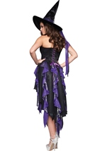 Bewitching Beauty Womens Halloween Costume