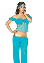 Arabian Beauty Woman Costume