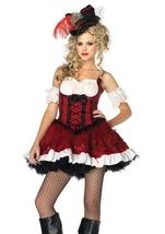 Ravishing Rogue Pirate Halloween Costume
