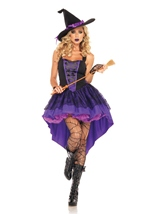 Broomstick Babe Costume