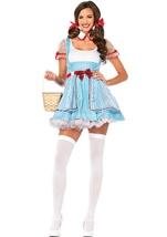 OZ Beauty Women Fairytale Halloween Costume