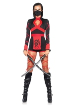 Dragon Ninja Woman Costume