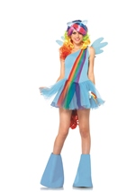 Adult Rainbow Dash Woman My Little Pony Costume