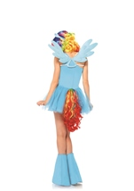 Rainbow Dash Woman My Little Pony Halloween Costume