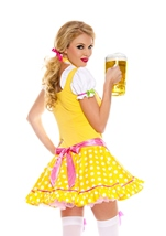 Adult Bright Dirndl Woman Costume