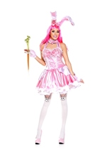 Bunny Babe Woman Costume