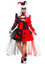 Adult Plus Size Steampunk Harley Costume Women Costume