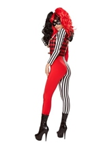 Adult Mischievous Jester Women Costume