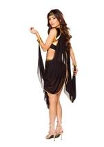 Midnight Goddess Woman Halloween Costume