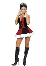 Heartbreaker Womens Costume