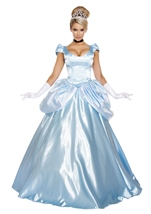 Adult Midnight Deluxe Princess Woman Costume
