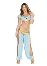 Palace Princess Woman Costume