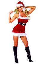 Chic Santa Woman Costume
