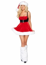 Santas Envy Women Costume