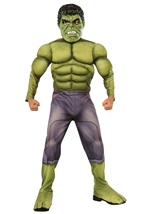 Hulk Boys Muscle Chest Costume