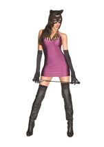 Catwoman Dc Super Villians Women Costume