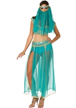 Harem Princess Sexy Arabian Dancer Costume