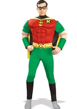 Comic Robin Hood Deluxe Muscle Super Hero Men Costume