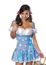 Wizard Of Oz Dorothy Secret Wishes Woman Costume